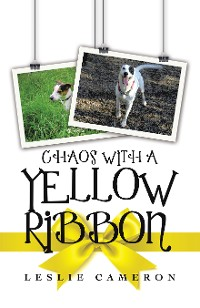 Cover Chaos with a Yellow Ribbon