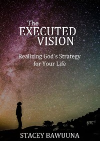 Cover The Executed Vision