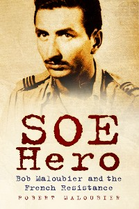 Cover SOE Hero