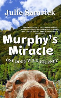 Cover Murphy's Miracle