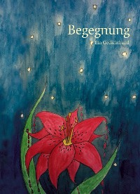Cover Begegnung