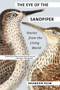 Cover Eye of the Sandpiper