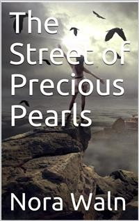 Cover The Street of Precious Pearls