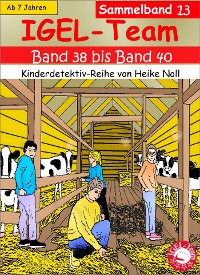 Cover IGEL-Team Sammelband 13