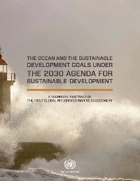 Cover The Ocean and the Sustainable Development Goals under the 2030 Agenda for Sustainable Development