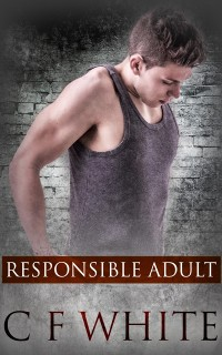 Cover Responsible Adult Box Set