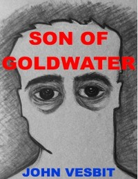 Cover Son of Goldwater