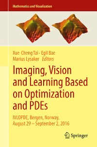 Cover Imaging, Vision and Learning Based on Optimization and PDEs