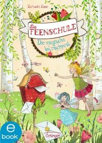 Cover Die Feenschule. Die magische Wunschpost
