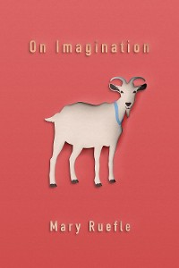 Cover On Imagination