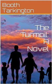 Cover The Turmoil: A Novel