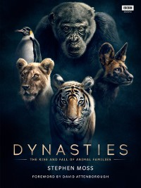 Cover Dynasties