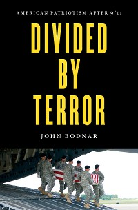Cover Divided by Terror