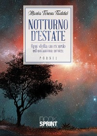 Cover Notturno d'estate