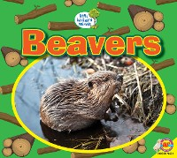 Cover Beavers