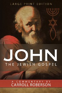 Cover John the Jewish Gospel