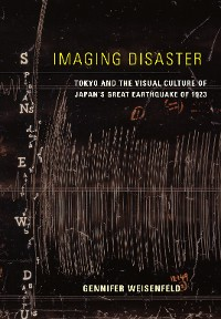 Cover Imaging Disaster