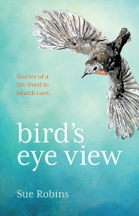 Cover Bird's Eye View