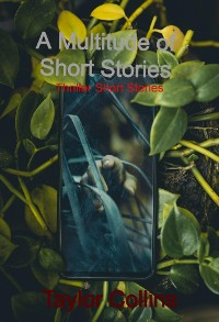Cover A Multitude of Short Stories