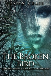 Cover The Broken Bird
