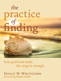 Cover The Practice of Finding