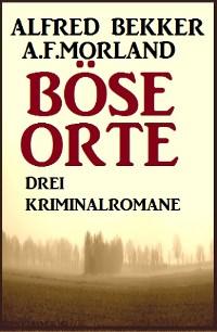 Cover Böse Orte: Drei Kriminalromane