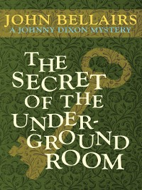 Cover Secret of the Underground Room
