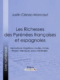 Cover Les Richesses des Pyrénées françaises et espagnoles