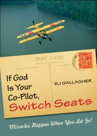 Cover If God is Your Co-Pilot, Switch Seats