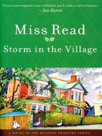 Cover Storm in the Village