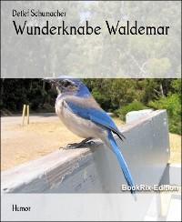 Cover Wunderknabe Waldemar