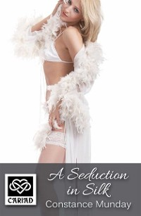 Cover Seduction in Silk