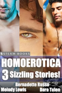 Cover Homoerotica - A Sexy Bundle of 3 Gay M/M Erotic Stories from Steam Books