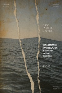Cover Wonderful Wasteland and other natural disasters