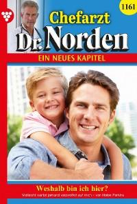 Cover Chefarzt Dr. Norden 1161 – Arztroman