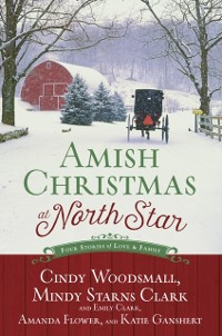 Cover Amish Christmas at North Star