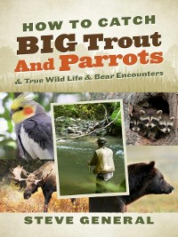 Cover How to Catch Big Trout and Parrots