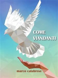 Cover Come viandanti