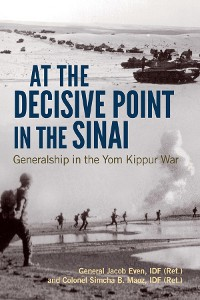 Cover At the Decisive Point in the Sinai