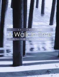 Cover A Walk In Time
