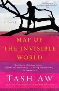 Cover Map of the Invisible World