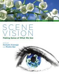 Cover Scene Vision