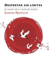 Cover Despertar Sin Limites