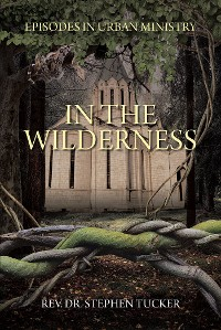 Cover In The Wilderness