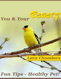 Cover You and Your Canary: Fun Tips - Healthy Pet!