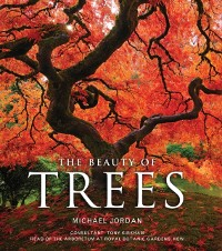 Cover Beauty of Trees