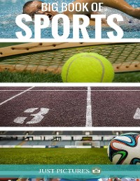 Cover Big Book of Sports
