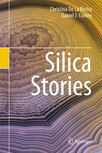 Cover Silica Stories