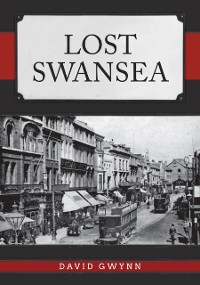 Cover Lost Swansea