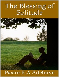 Cover The Blessing of Solitude